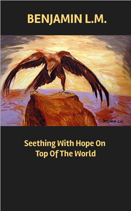 Seething With Hope On Top Of The World  2016  Poems / Spoken Word & Music  eBook & Audio  Published by Clear Colours